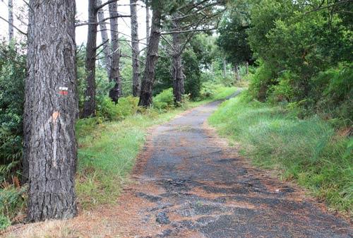 Camino de Andramariturri por el GR 280.