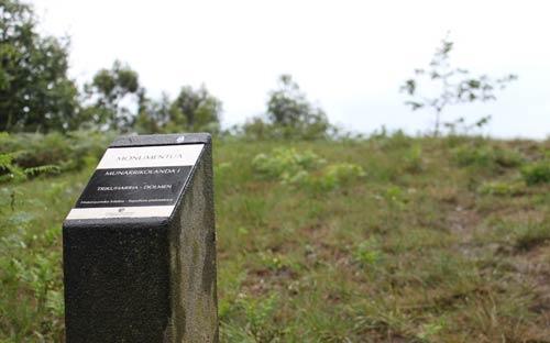Primer túmulo de la Ruta de los Dólmenes de Munarrikolanda.