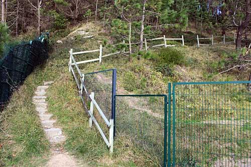 Arranca nuestro camino boscoso hacia el Faro de Gorliz.