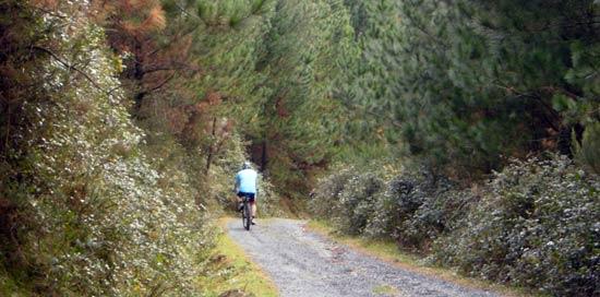 Esta ruta es perfecta para hacerla a pie o en bicicleta.