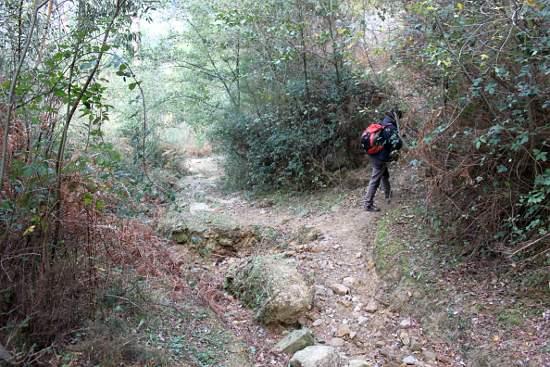 Este sendero te lleva a El Regato (pasando primero por Tellitu).