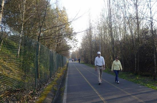 Demostrado: vista la afluencia, esta vía verde es el paseo oficial de Mungia.