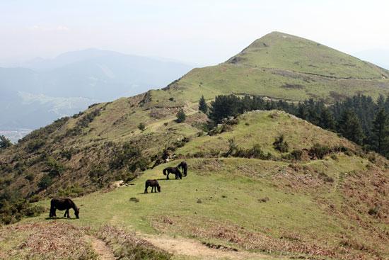 Del Mugarriluze al Goikogane, un paseo.