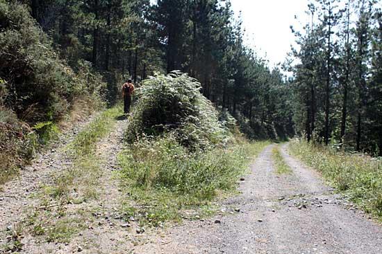 Abandonamos el camino principal y tomamos el desvío.
