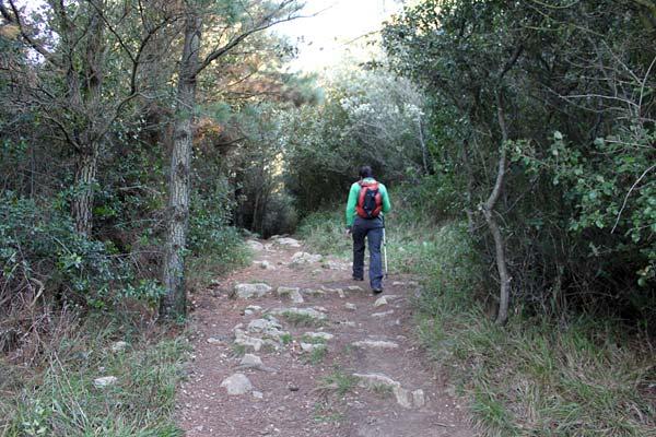 Pasamos de asfalto a bosque y de bosque a roca, ya lo verás.
