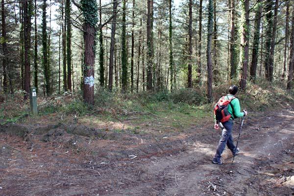 Siguiendo la flecha blanca hacia Gernika.