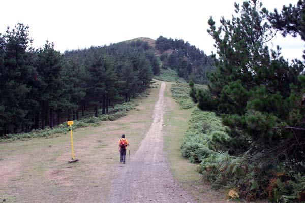 El monte Artanda, a un paso. ¡A un paso!