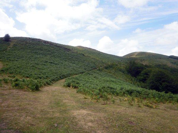 Allá asoma el monte Larragorri.