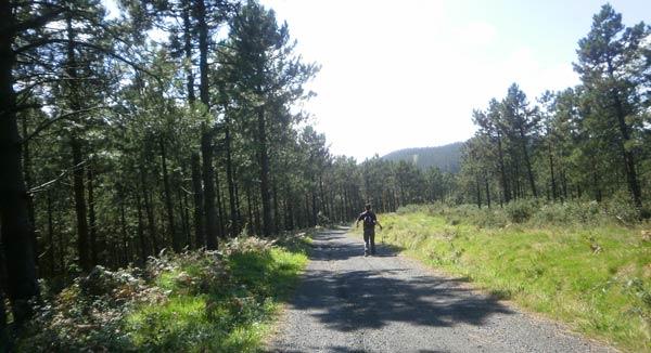 Ahora por llano camino de Sollubegana.