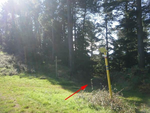 Pintura en la señal del gasoducto y un poste más allá, para que no quede duda.