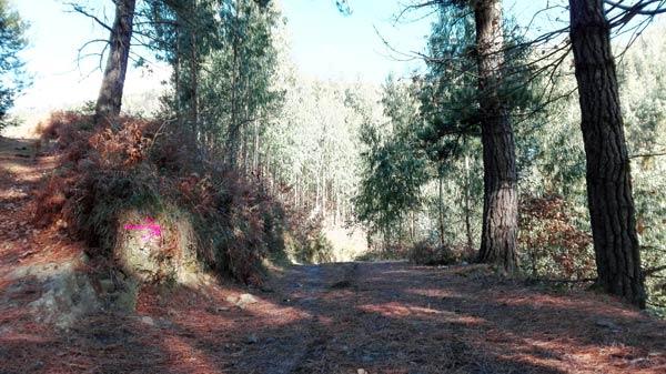 Buena pista hacia la cima del Kukutza / Elorritxugana.