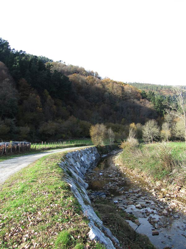 Río Calera, pronto un cauce seco.