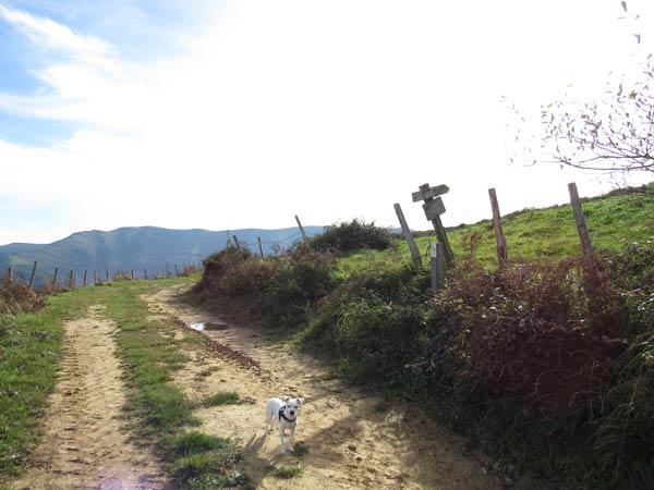 Atentos a la señal. Hacia la derecha subimos al monte Cotobasero.