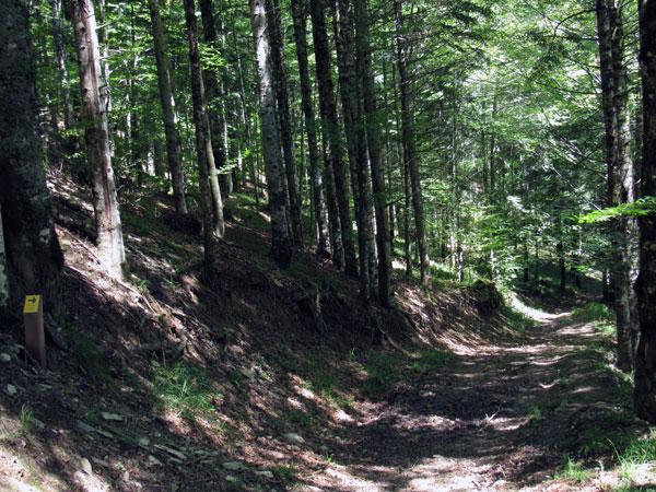 El sendero Errekaidorra está perfectamente señalizado.
