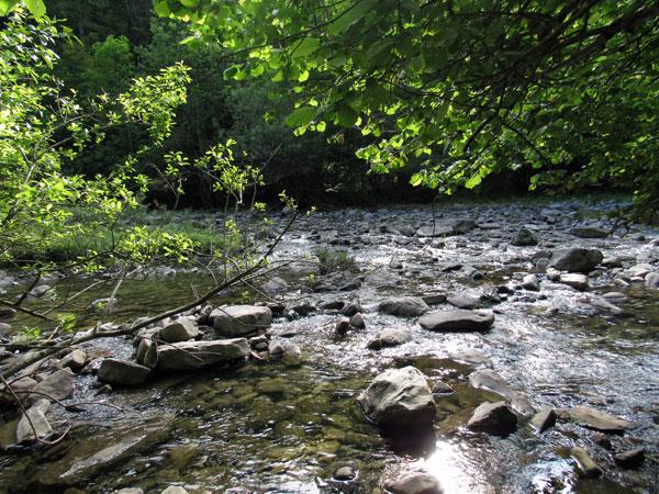 El sendero continúa, como diría Jorge Drexler, al otro lado del río